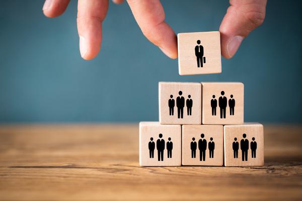 A organização social é o modo como a sociedade constitui-se para manter as suas instituições em funcionamento.