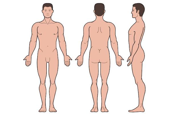 Observe a chamada posição anatômica do corpo.