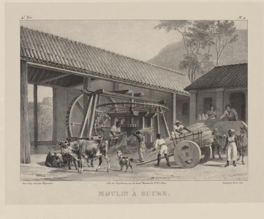 Moenda de cana-de-açúcar (1835), de Johann Moritz Rugendas (1802-1858).