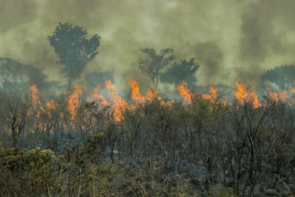 Queimadas na Floresta Amazônica.