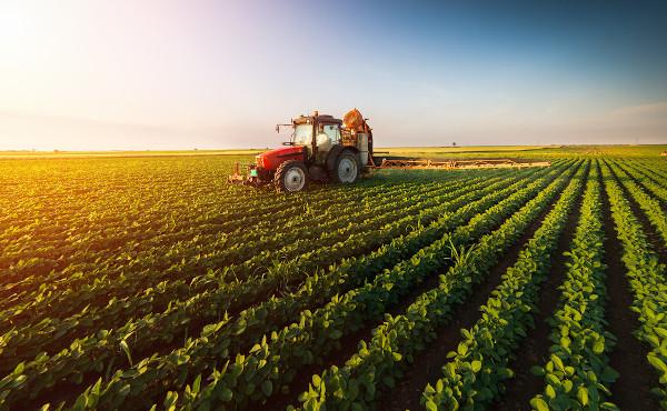 A Revolução Verde tornou a agricultura brasileira bastante competitiva e mecanizada.
