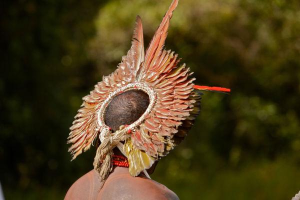 A Funai é o órgão indigenista oficial do Brasil e cuida da proteção dos direitos dos povos nativos.