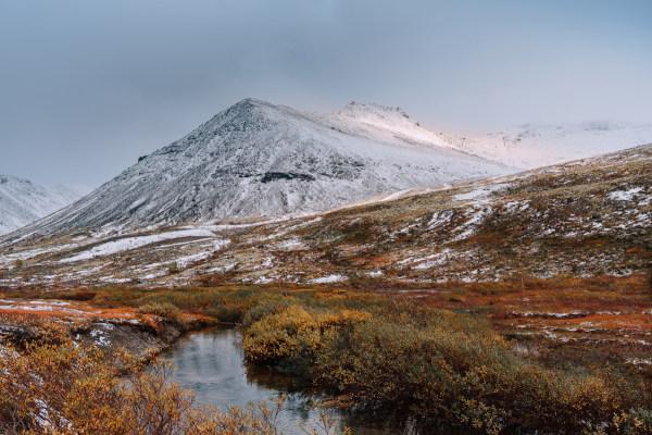 A Tundra ocorre em regiões muito frias do globo e áreas de elevada altitude, como nos Himalaias e nos Alpes.