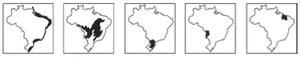 Mapas marcando: litoral brasileiro; parte do Centro-Oeste, Nordeste e Sudeste; parte do Sul; MT e MS; parte do Nordeste.