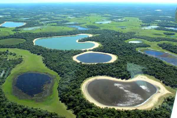 Foto aérea de região do Pantanal.