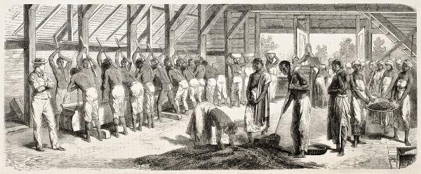 Os primeiros registros apontam que os primeiros africanos escravizados chegaram ao Brasil na década de 1560.