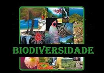 A biodiversidade é uma das propriedades fundamentais da natureza