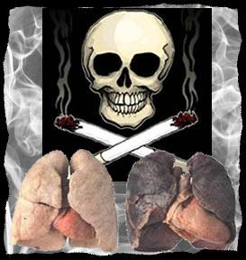 Pulmão de não fumante e pulmão de fumante