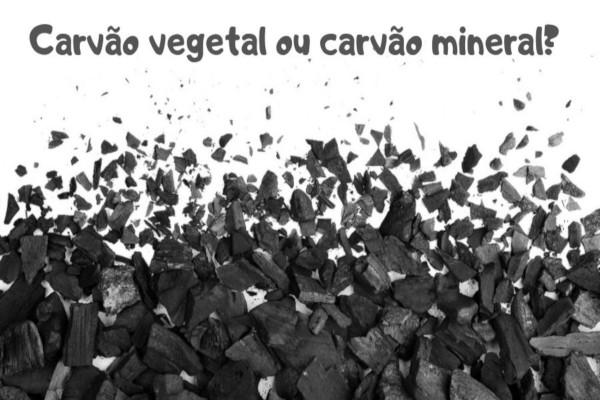 Existem na natureza o carvão vegetal e o carvão mineral, que são formados por meio de processos diferentes.