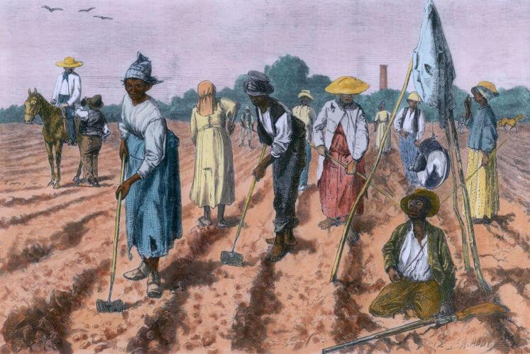 Após a Lei Áurea, muitos libertos abandonaram os locais que moravam e procuraram empregos em outras fazendas.