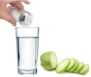 Para este experimento, você precisará basicamente de água, sal e chuchu