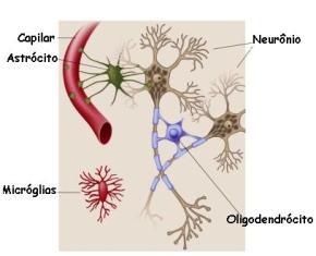 As células da glia são um conjunto de diversos tipos celulares