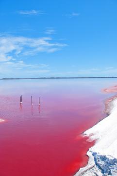 Lagos com coloração rosada ocorrem muito na Austrália