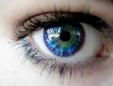 O olho humano também é exemplo de sistema óptico