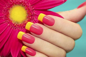 As unhas possuem a função de proteger as pontas dos dedos e ajudar na manipulação de objetos