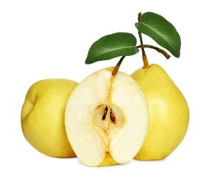 Pêra é o fruto originário da árvore denominada pereira