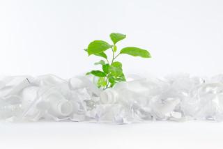 O plástico verde é de origem renovável e não contribui para o aumento de gás carbônico na atmosfera