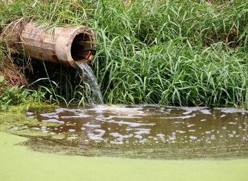 Para que um rio seja tratado, é fundamental que não seja lançado esgoto não tratado