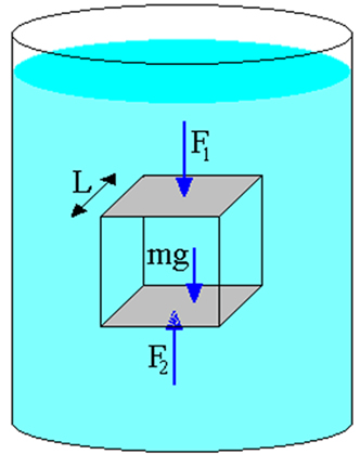 Cubo em equilíbrio no interior de um fluido em repouso