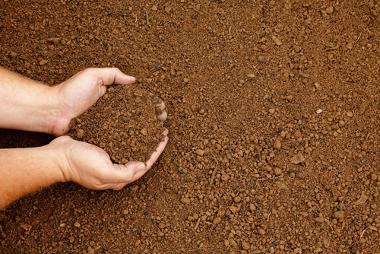 Os solos são meios naturais de vida
