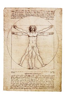 O homem vitruviano — desenho de Leonardo Da Vinci que expressa as potencialidades da formação humanística