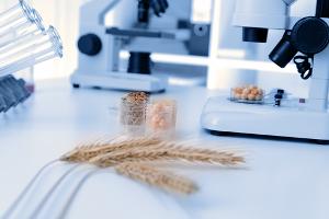 A produção agrícola através do desenvolvimento de pesquisas em sementes surge com a revolução verde