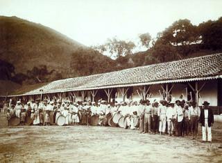 Fotografia de Marc Ferrez (1843-1923) que retrata escravos em fazenda de café no Brasil (c.1895)