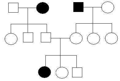 Em uma genealogia as mulheres são representadas por círculos e os homens por quadrados