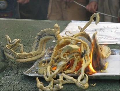 Versão original da serpente de Faraó, em que se queima tiocianato de mercúrio, mas é uma experiência muito perigosa*