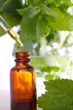 Os fitoterápicos não incluem produtos que possuem substâncias ativas isoladas