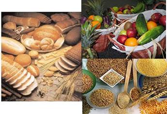 Uma alimentação rica em amido e glicose garante muita energia para as atividades do nosso dia a dia.