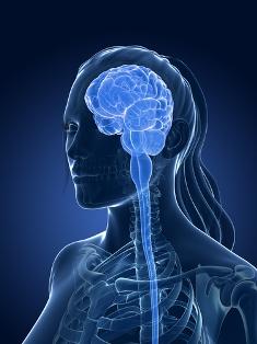 A esclerose múltipla é uma doença neurológica causada pela destruição da mielina