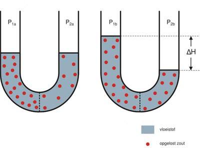 A osmose é um dos tópicos estudados nesta parte da química.