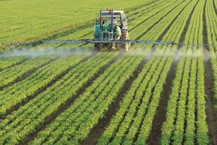 O desenvolvimento das atividades agrícolas propiciou novas tecnologias, mas trouxe inúmeros danos ao meio ambiente