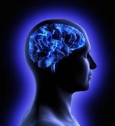 A Doença de Tay-Sachs é uma desordem neurodegenerativa