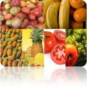 O consumo diário de frutas e verduras evita a obesidade