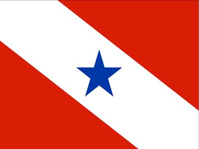 A bandeira do Pará