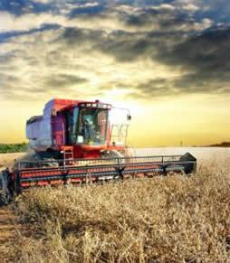 O principal embate da agricultura do futuro deverá ser a segurança alimentar mundial