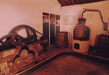 A produção de cachaça foi uma atividade econômica alternativa frente à crise do açúcar, no século XVII.