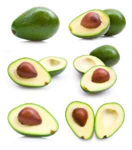 São conhecidas mais de 500 espécies de abacate