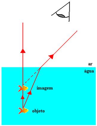 Um observador vê o peixe mais próximo da superfície por causa da refração da luz na água