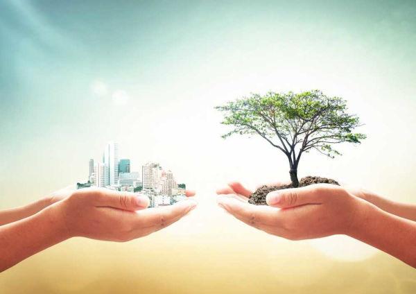 A ação antrópica no meio ambiente apresenta impactos positivos e negativos.
