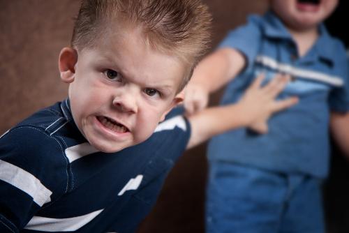 A agressividade é compreendida como uma forma da criança se defender, porém precisa ser orientada pelos pais