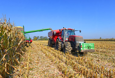 A agricultura é uma atividade primária que fornece alimentos e matéria-prima para a indústria
