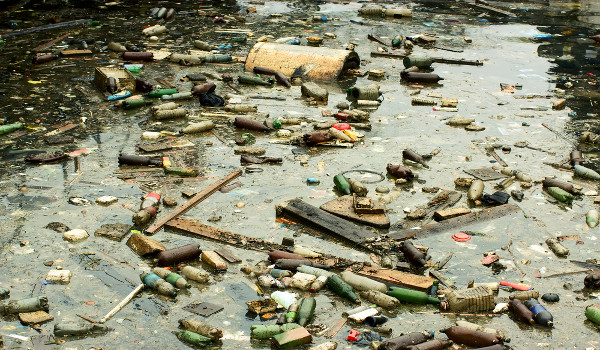 A água poluída e a água contaminada possuem diferenças