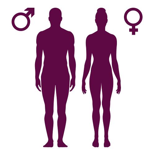 A área da superfície do corpo humano pode ser determinada por uma equação matemática
