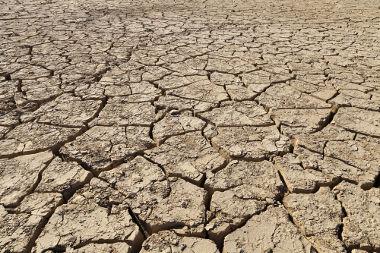 A degradação dos solos torna-os improdutivos e prejudica as atividades humanas e naturais