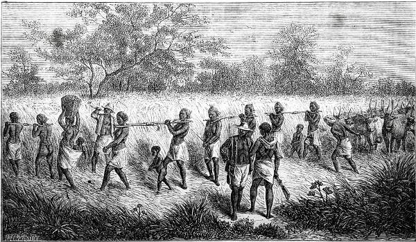 A escravidão já existia na África antes da chegada dos europeus no século XV