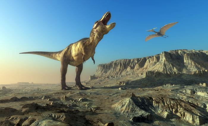 A extinção dos dinossauros geralmente é atribuída à queda de um meteorito, mas o surgimento de angiospermas também pode ter sido um importante fator