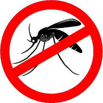 A luta contra o mosquito-da-dengue deve ser constante